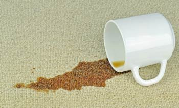 Stain Removal Services